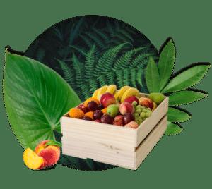 Grande corbeille de fruits braam