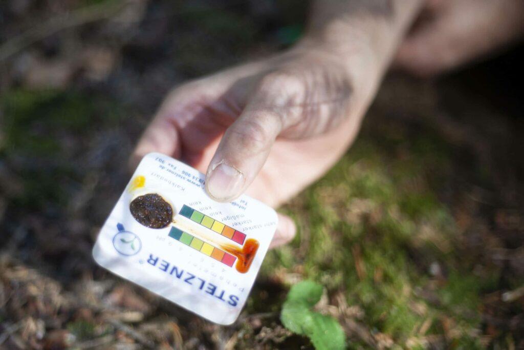 gros plan d'un main tenant un échantillon de terre à analyser dans une forêt.