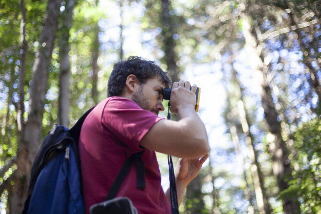 homme au t-shirt bordeau regardant au loin avec des jumelles dans une forêt.