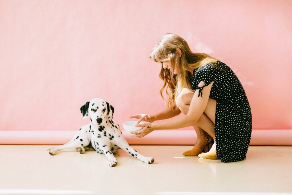 jeune femme donnant à boire à un chien dalmatien devant un mur rose