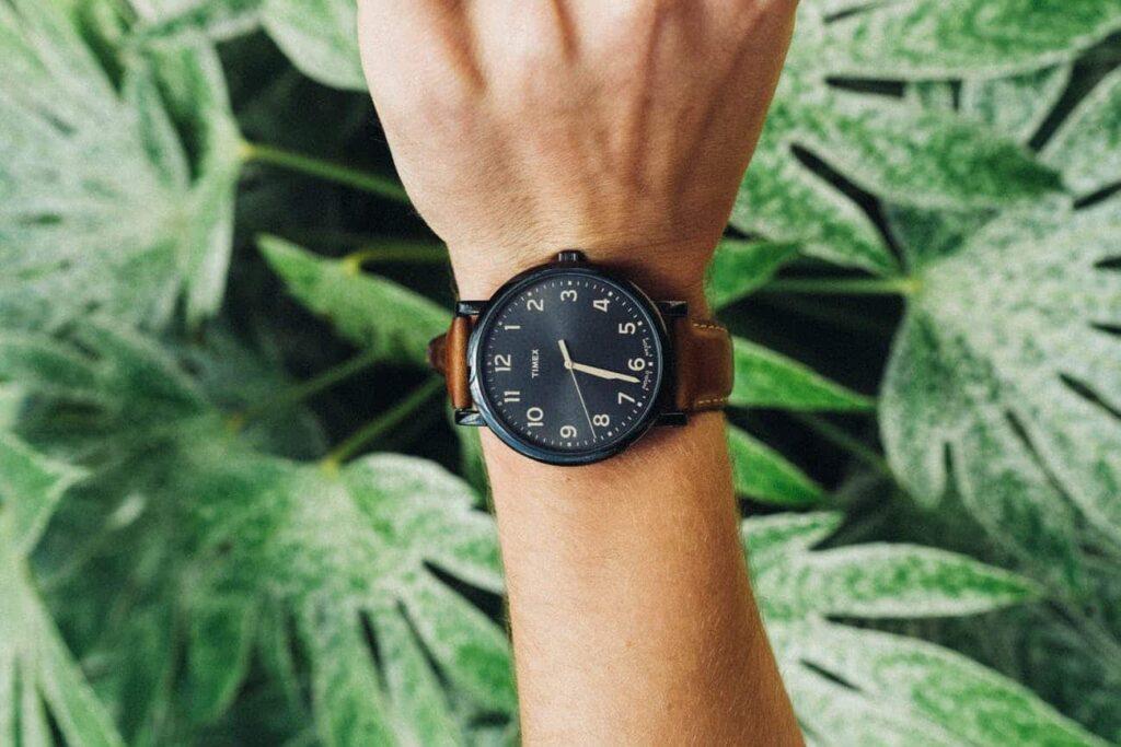 une montre dans la nature